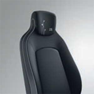 Black Upholstery Fabric (Image: Renault)