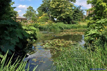 Myddelton House Gardens (Image: Surya)